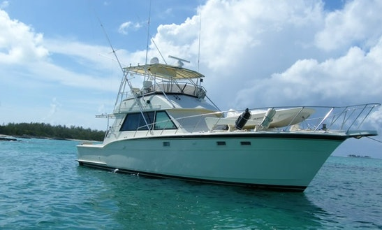 Fishing And Diving Charters In Nassau, The Bahamas
