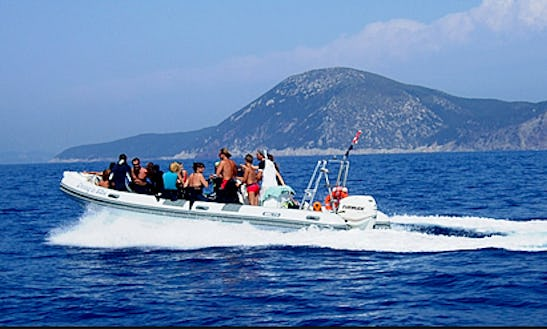 Captained And Guided Diving Tour In Portoferraio Elba
