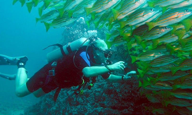 Scuba Diving in Playa Hermosa