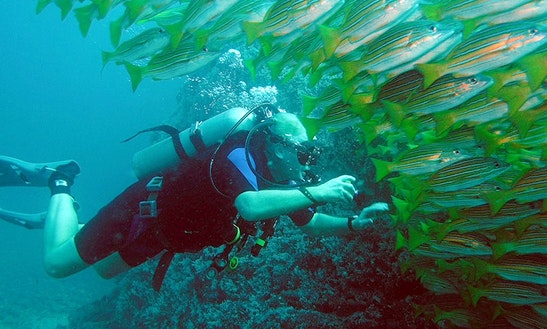 Scuba Diving In Playa Hermosa