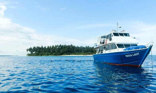 Naga Laut Trawler Hire In North Jakarta