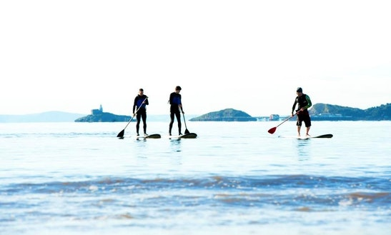 Stand Up Paddleboard For Hire In Swansea