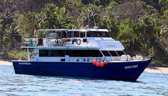 11 Day Menatawai Islands Surfing Charter