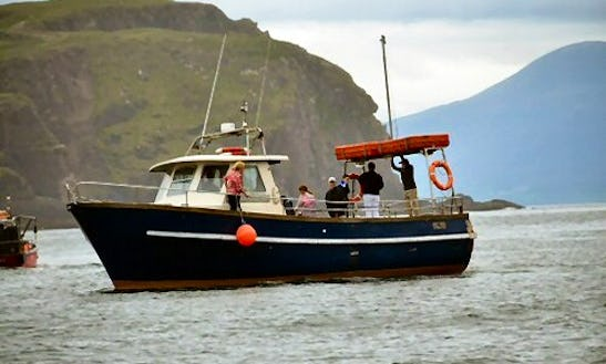 Cruise Ireland On Maid Of Clew Bay Passenger Boat In Gimli