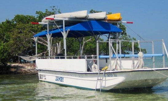 Snorkel Trips In Key West, Florida
