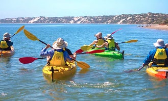 Single or Double Kayak Rental in Goolwa
