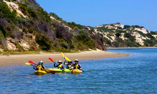 Tandem Kayak Rental In Goolwa (double Kayak)