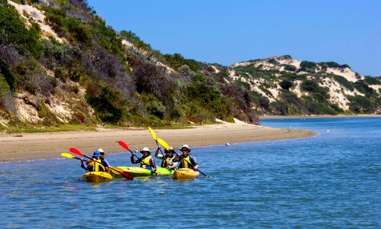 Kayak Rental In Goolwa (double Kayak)