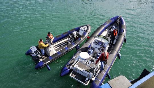 Zodiac Boat Dive Charter In Kinsale