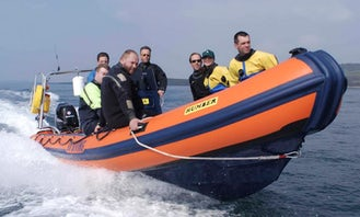 Diving Charter in Northern Ireland