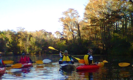 Kayak Adventure In Wilmington