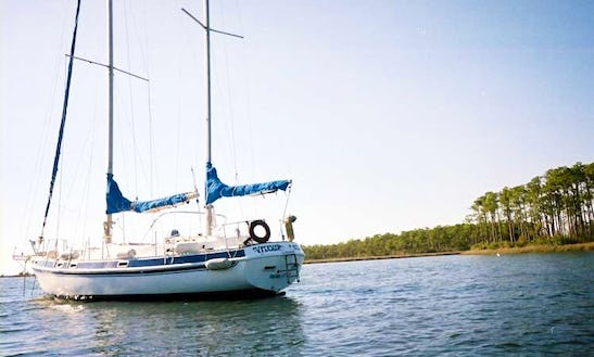 Charter On 41ft Morgan Yacht In Paget, Bermuda