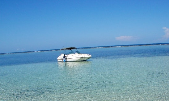 Stingray Excursion Charter In Grand Cayman