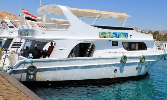 Snorkel Charter In Egypt