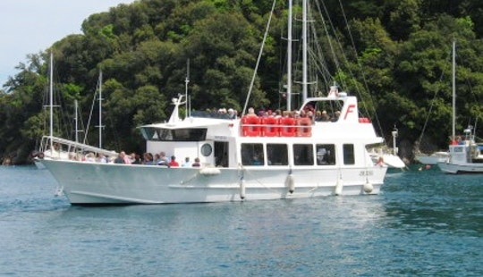 Sciacchetra Passenger Boat In Rapallo