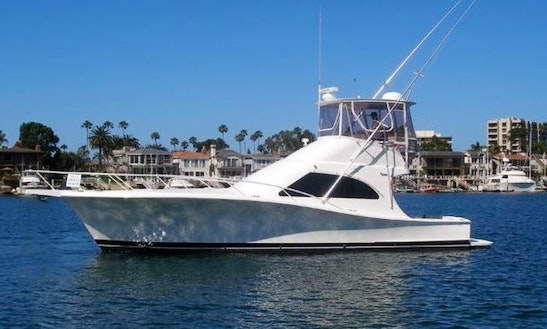 Charter Luhrs 44' Sport Fisherman In Los Angeles