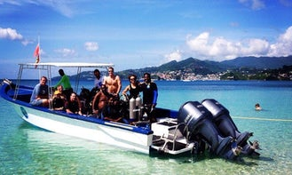 Snorkeling Charters in Barbados