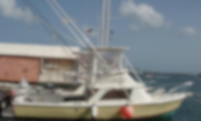 Sport Fisherman Charter in Colebay