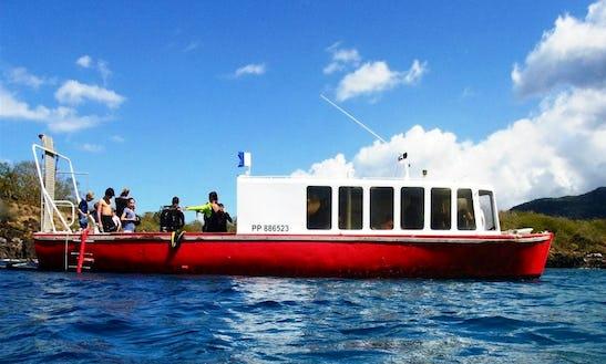 Diving Boat In Bouillante Fwi