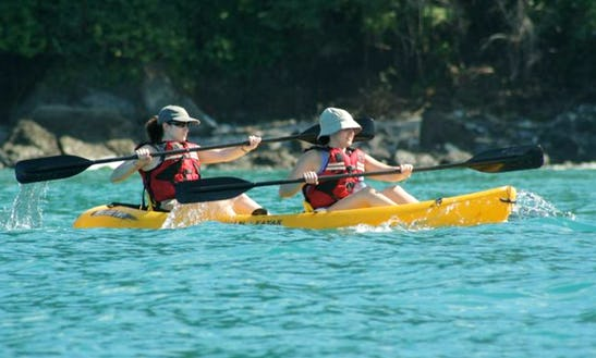 Guided Half-day Kayak Tours In Quepos