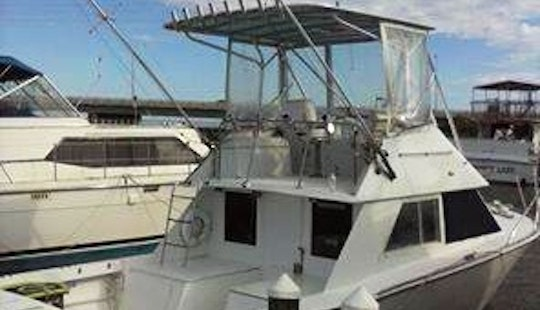 32' Sport Fisherman Charter In Fort Pierce, Florida