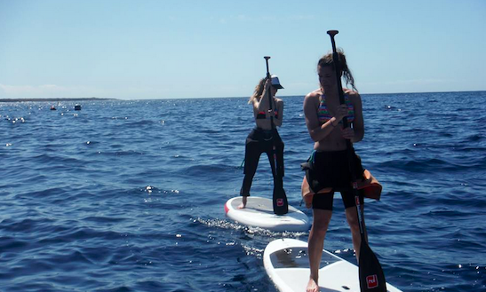 Sup Tours In El Médano, Spain