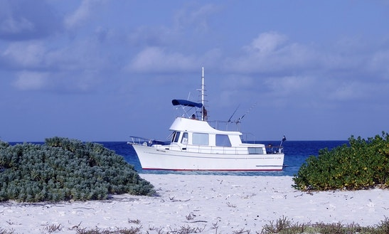 Captain Boots 34' Boat Charters In Curacao