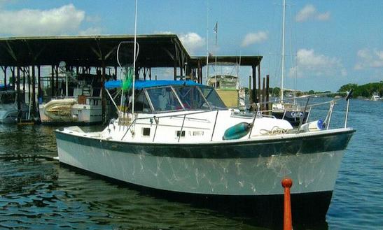 30ft Sportfisherman Boat Charter In Crystal River, Florida