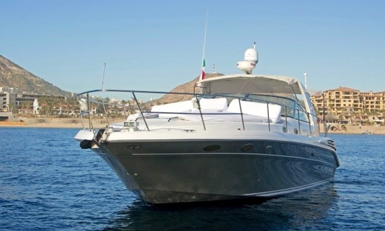 Charter 42ft Luxury Yacht In Cabo San Lucas, Mexico