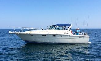 33' Tiara Motor Yacht Fishing Charter in Rochester, New York