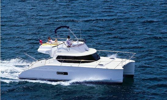 Power Catamaran Boat Tour In Tenerife