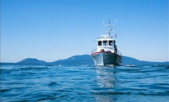 42ft Trawler Boat Charter In Anacortes, Washington