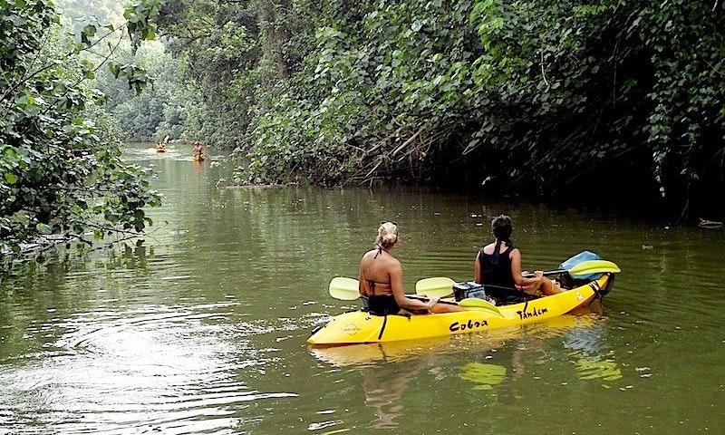 Kayak Wailua Tours in Kauai | GetMyBoat