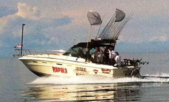Sea Ray Sport Fisherman Charter In Saint Catharines