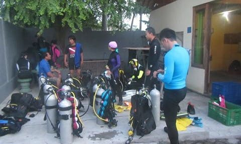 Guided Diving Charters in Bali