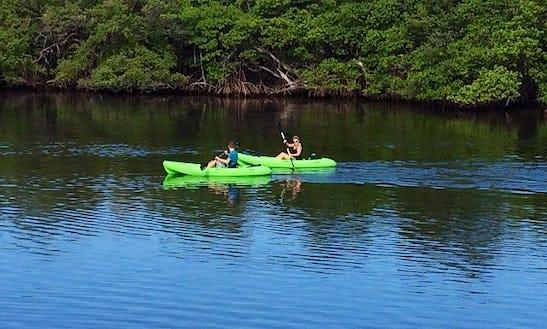 Sit-on-top Kayak Rental In North Palm Beach, Florida