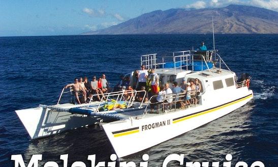Molokini Snorkel Tour Aboard The Malolo