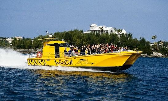 Performance Hydrofoil Catamaran Charter