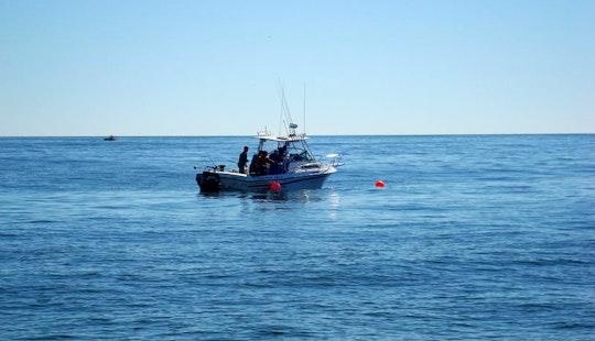 Ocean Rambler Fishing Charters In Ucluelet