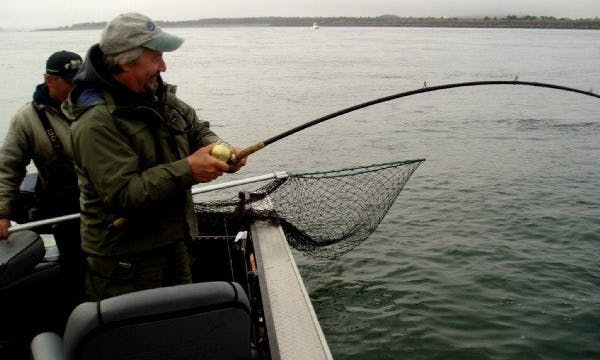 Guided Fishing Trips on the Columbia River, the Willamette River, & Tillamook Bay