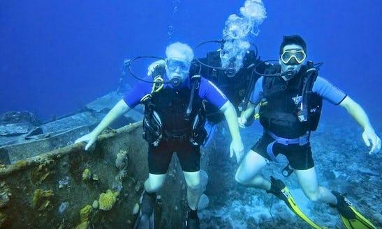 Diving In Matanzas, Artemisa