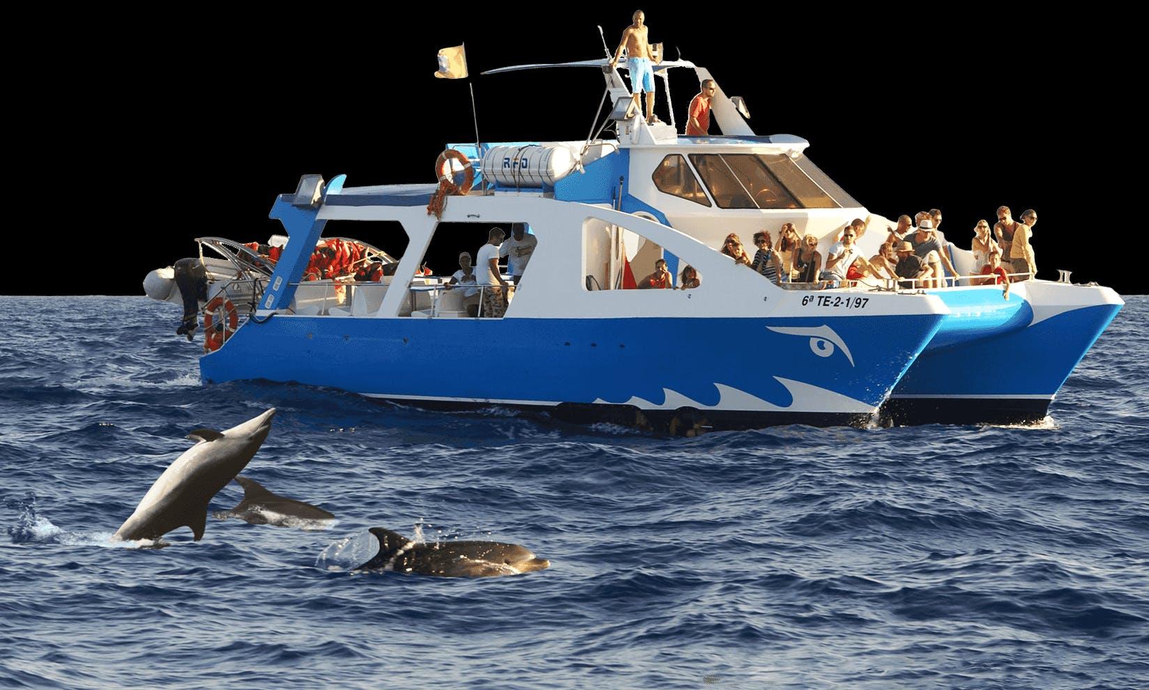 """Charter """"Fancy II"""" Power Catamaran In Spain"""