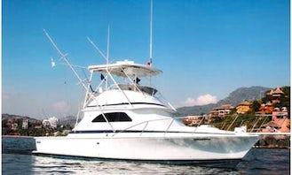 Fishing Charter Orion