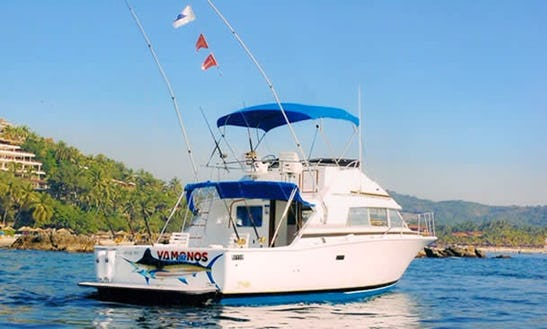 Fishing Charter 'vamonos I' In Zihuatanejo