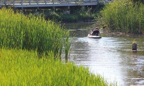 Kayak Rental In Ludington