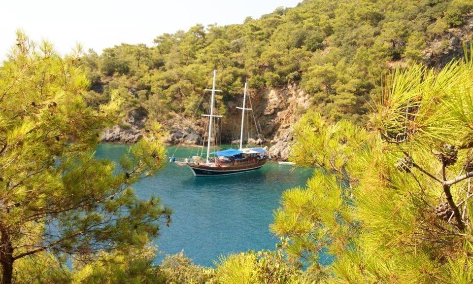Socio Tours - Cheap Gulet Rental in Turkey 12 Pax