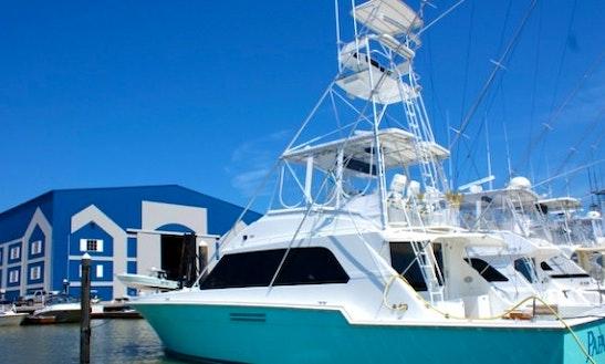 Motor Yacht Charter In Galveston