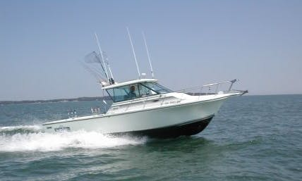 30′ Baha Fisherman Center Console Rental in Curtice