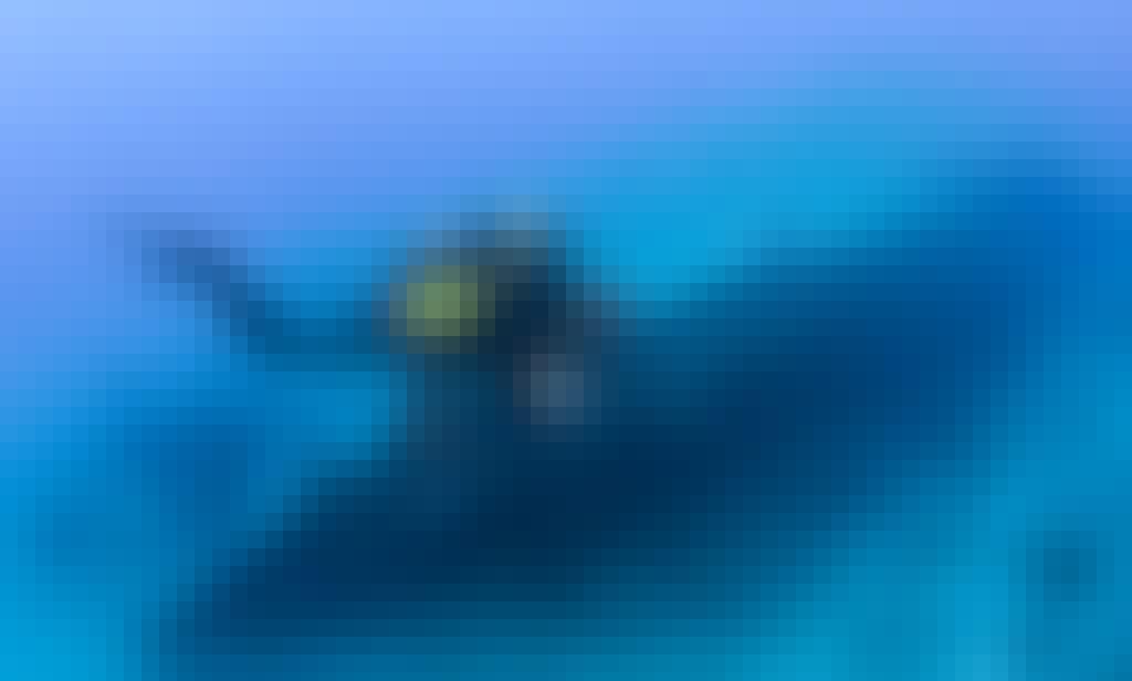 Double Dutch -32ft Island Hopper Private Dive Charters in Sint Maarten