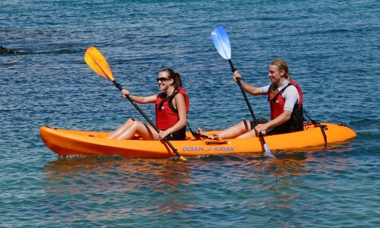Rent A Tandem Kayak In Bodega Bay